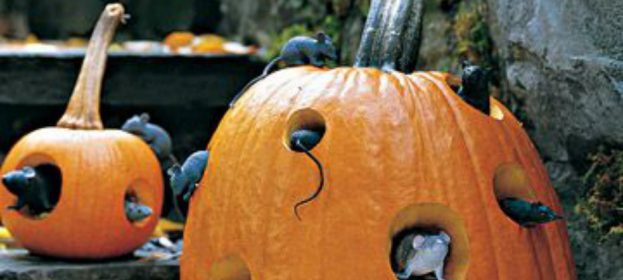 Halloween Garden Decor