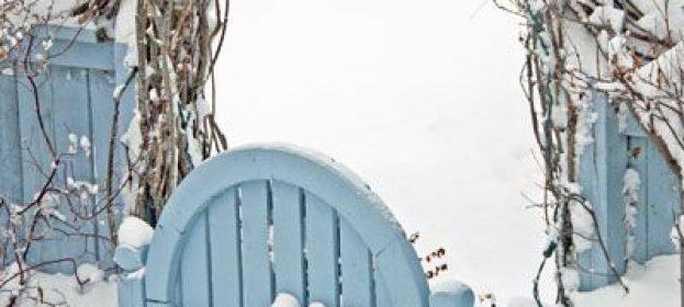 5 Winter Gardening Tips