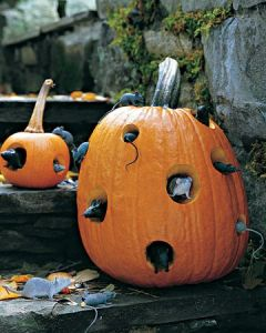 Mouse Hotel Pumpkin