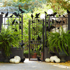 bird-theme-entry Halloween Garden Decor