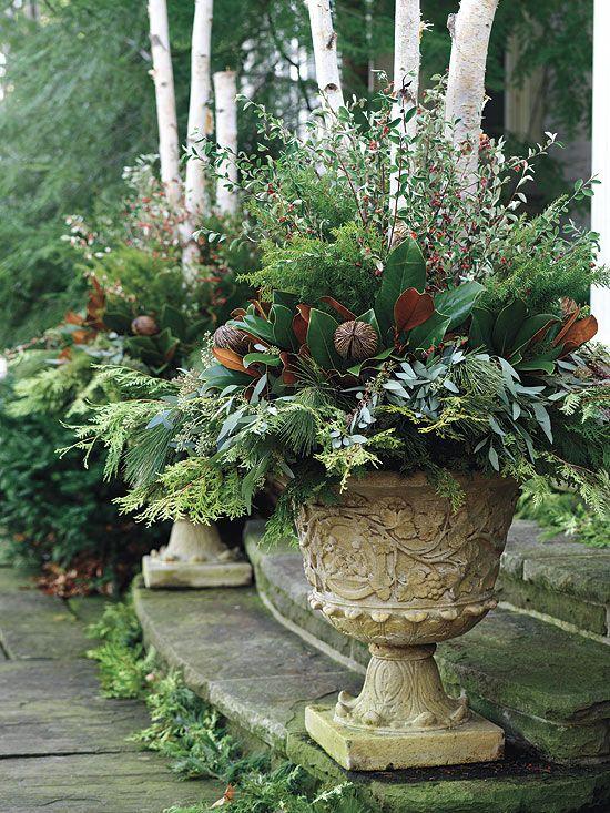 Garden Ideas For Winter Part - 37: Winter Garden Containers