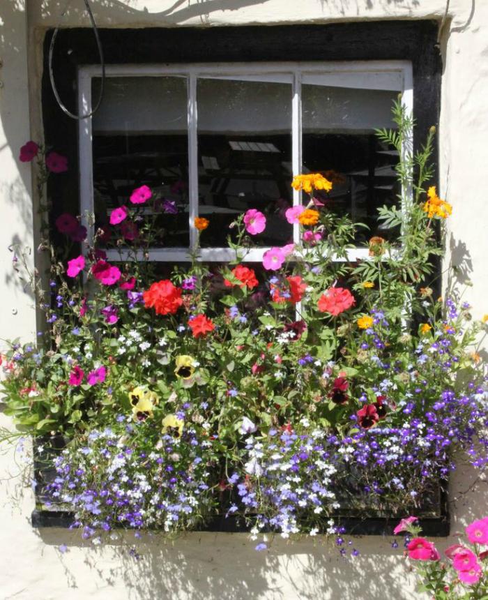 Charming Spring Window Boxes Flagsonastickblog Com