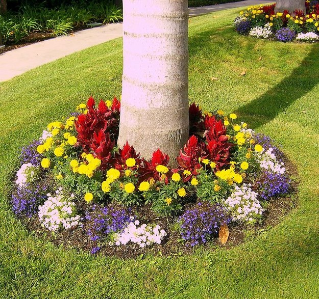 Flowers around a tree add great curb appeal