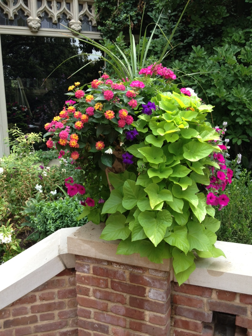 container gardening for curb appeal