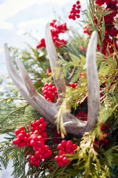 Antlers and berries holiday decor