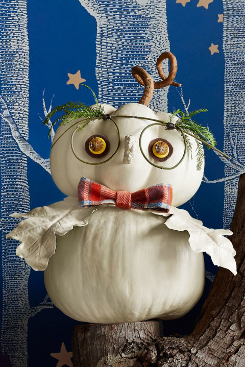 DIY owl pumpkin decorating ideas