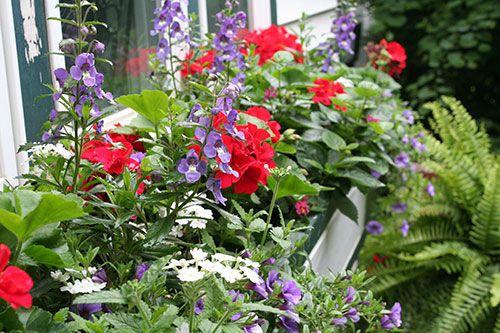 Patriotic Garden Decor Patriotic window box