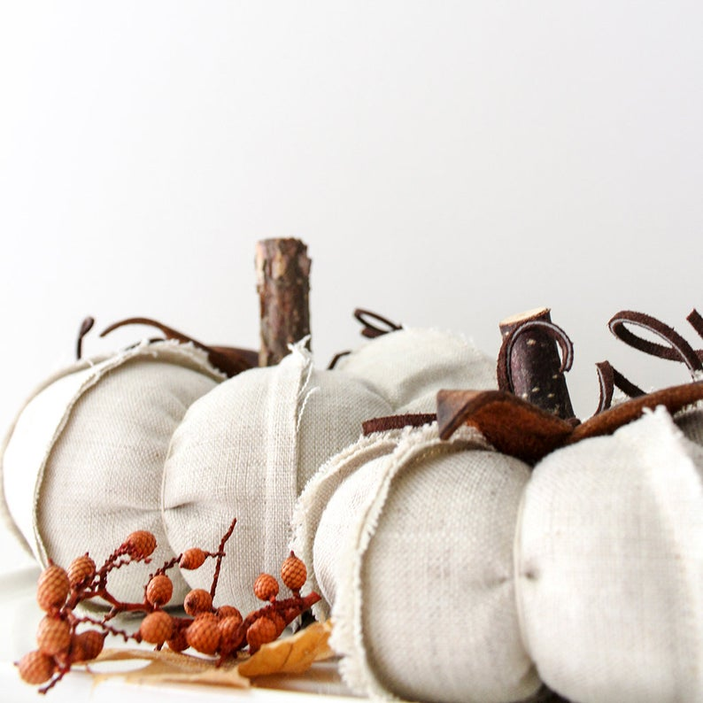pumpkins with unique leather leaves